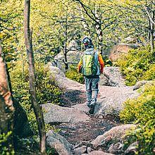 Ein Kind wandert auf einem Klippenweg durch den Wald