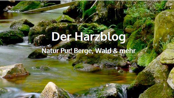 Harzblog