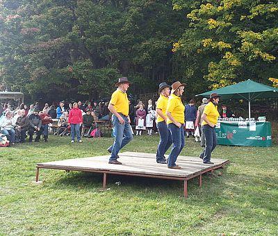 Linedancer auf dem Kuhball